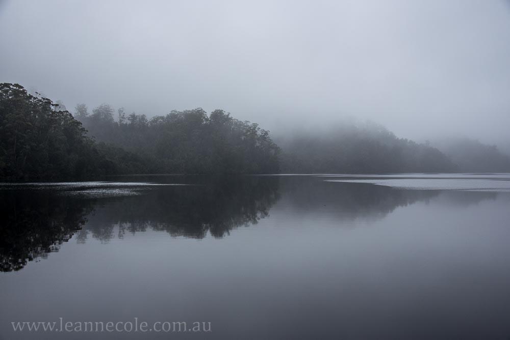 tasmania-strahan-worldheritage-gordon-river-3775