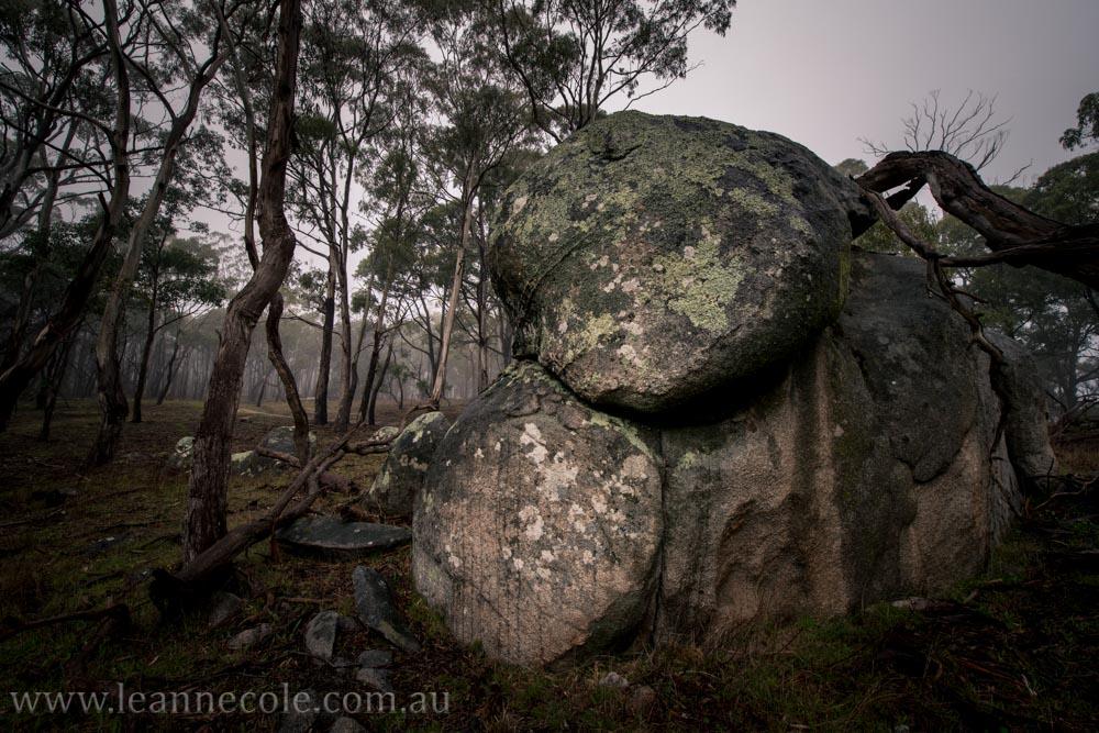 castlemaine-mountain-rocks-bushland-fog-7884