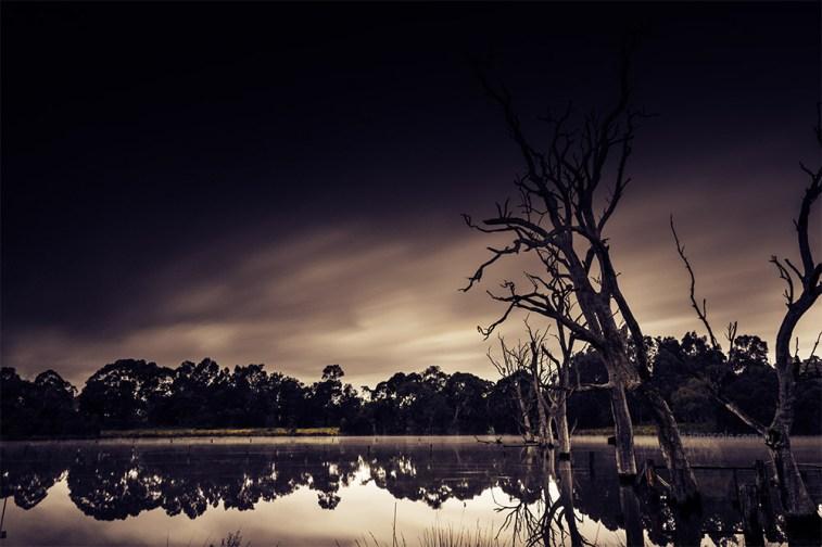 banyule-flats-swamp-long-exposure