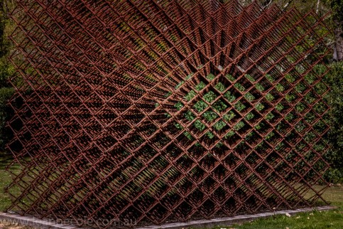 heide-banksia-park-landscape-flowers-102
