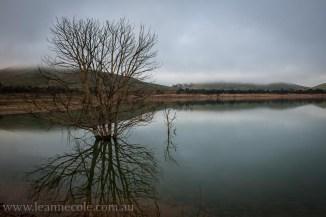 bonnie-doon-fog-winter-1038