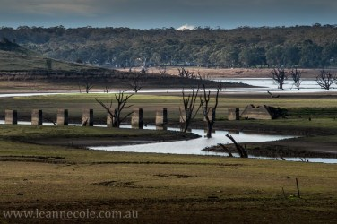 victoria-country-roads-winter-4075