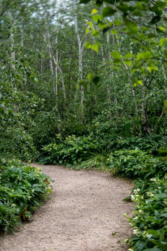 alowyn-gardens-lensbaby-velvet56-yarraglen-2305