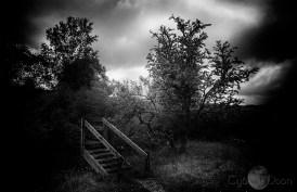 14/THE RUNES OF THE GATEKEEPER'S DAUGHTER