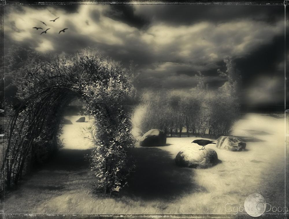 17/ THE RUNES OF THE GATEKEEPER'S DAUGHTER