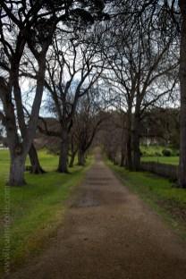 port-arthur-historical-site-tasmania-colour-9818