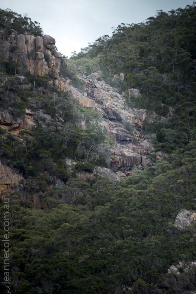 tasmania-trip-wineglassbay-boat-cruise-7893