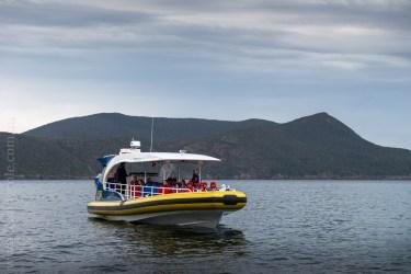 tasmanisland-cruise-pennicott-tasmania-cliffs-9225