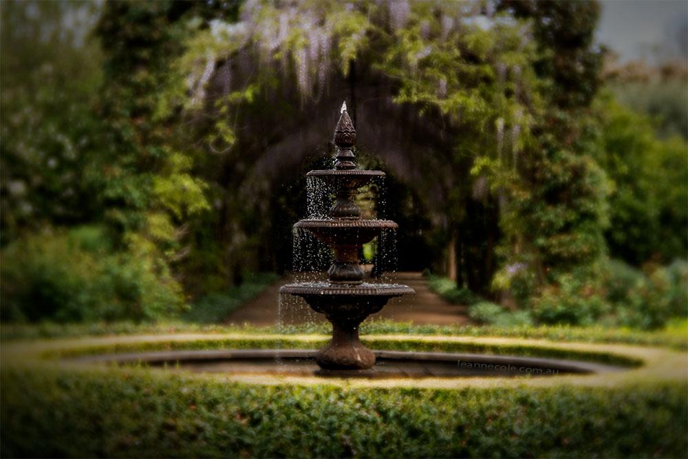 alowyn-gardens-lensbaby-velvet-85-1034