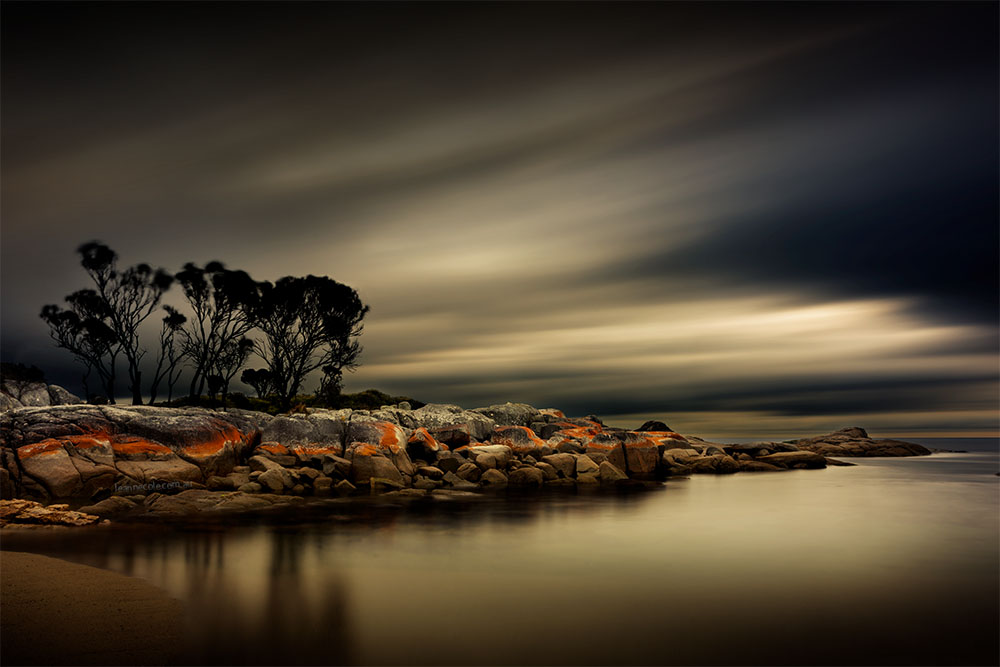 trees-binalong-bay-longexposure-tasmania