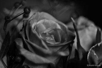 3/MyBlog – solaner