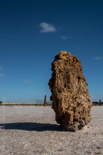 saltpans-salinity-SwanHill-rural-environment-2580