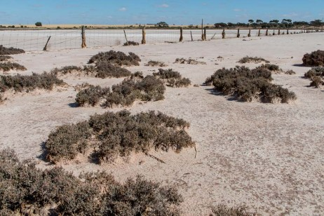 saltpans-salinity-SwanHill-rural-environment-2658