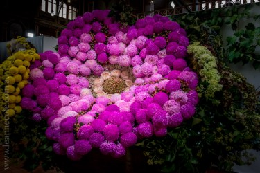 mifgs-flower-gardens-exhibits-melbourne-6671