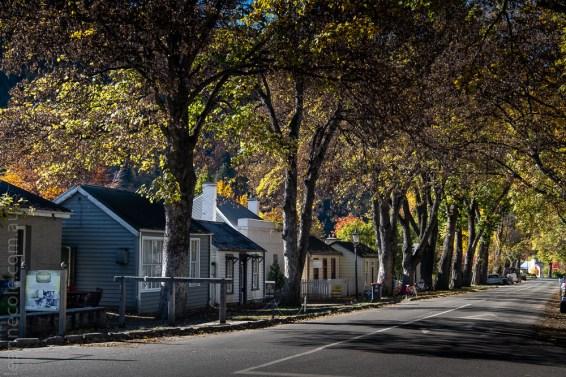 arrowtown-autumn-leaves-historic-newzealand-3044
