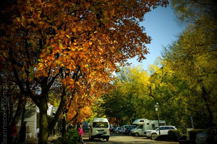 arrowtown-autumn-leaves-historic-newzealand-3049