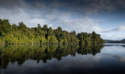 glacierlake-tours-boat-lake-rainforest-9184