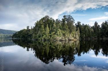 glacierlake-tours-boat-lake-rainforest-9242