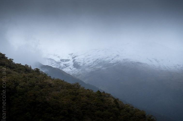 road-wanaka-lakes-waterfalls-newzealand-2865