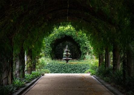 wisteria-walkway-alowyngardens-yarraglen-1597