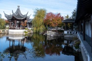 chinese-gardens-dunedin-autumn-newzealand-1098
