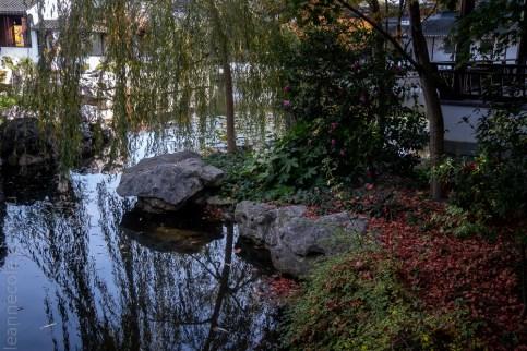 chinese-gardens-dunedin-autumn-newzealand-1119