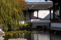 chinese-gardens-dunedin-autumn-newzealand-1134
