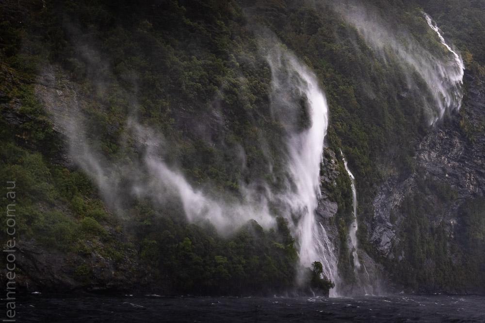 doubtfulsound-boatcruise-fiordland-newzealand-0781
