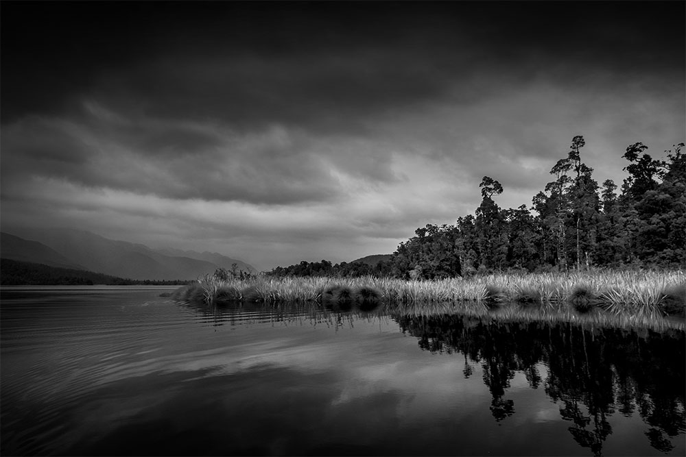 Monochrome Wednesday - Lake Mapourika