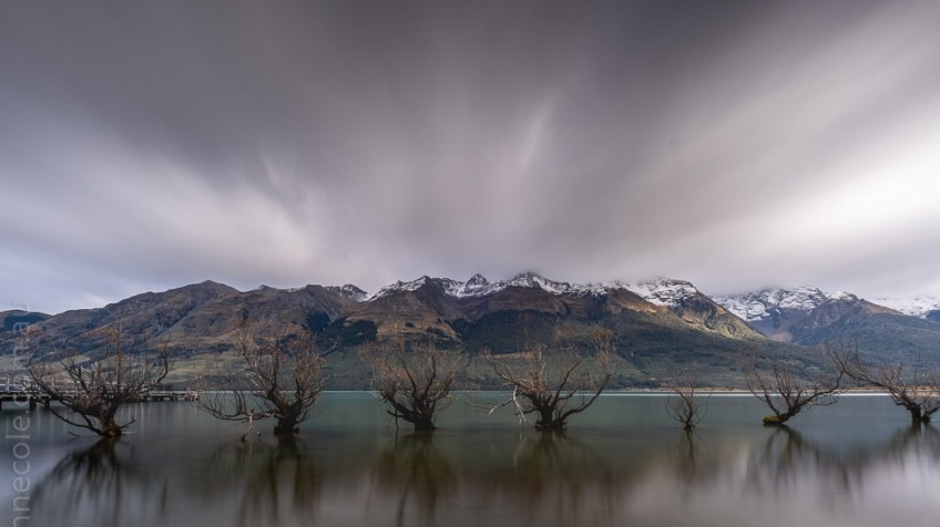 glenorchy-trees water-lake-newzealand-9886