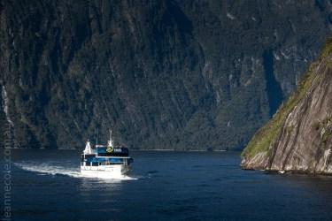 milford sound-boatcruise-fiordland-newzealand-0128