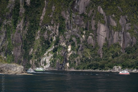 milford sound-boatcruise-fiordland-newzealand-0276