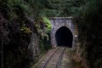 train-taieri-gorge-dunedin-newzealand-1569