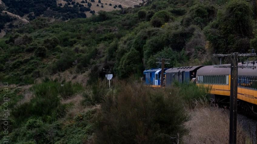 train-taieri-gorge-dunedin-newzealand-1716