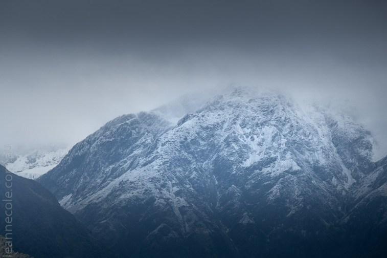 glacierlake-tours-boat-lake-rainforest-2669
