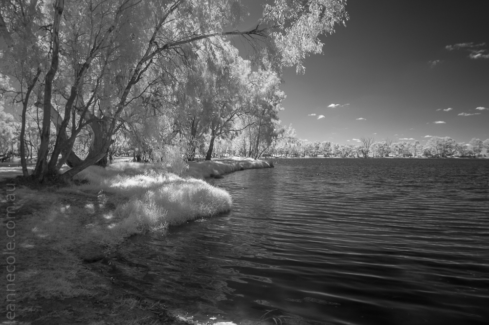 Weekend Wanderings - Hopetoun Lake in infrared