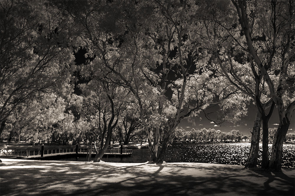 Monochrome Madness - An infrared lake
