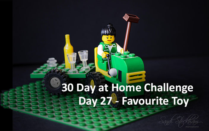 Day 27 – 30 Day at Home Challenge