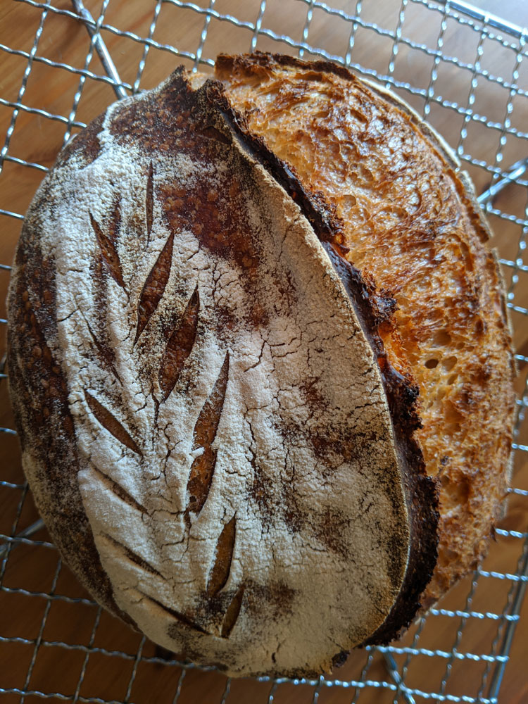 Sourdough - what I have learned