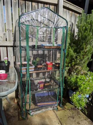 Trying to work out how to use my greenhouse