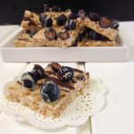 Raw PB, All Bran, Oat, Blueberry & Chocolate squares