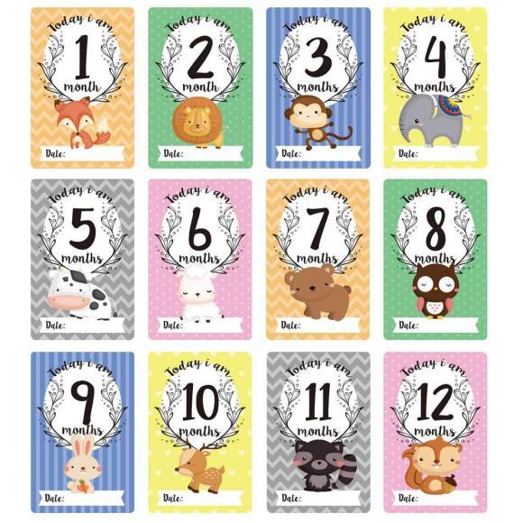 12Pcs/set Baby Milestone Wall Stickers
