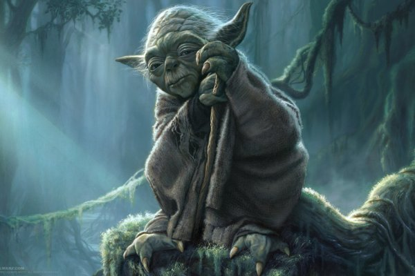 Yoda Unlearn What You Have Learned