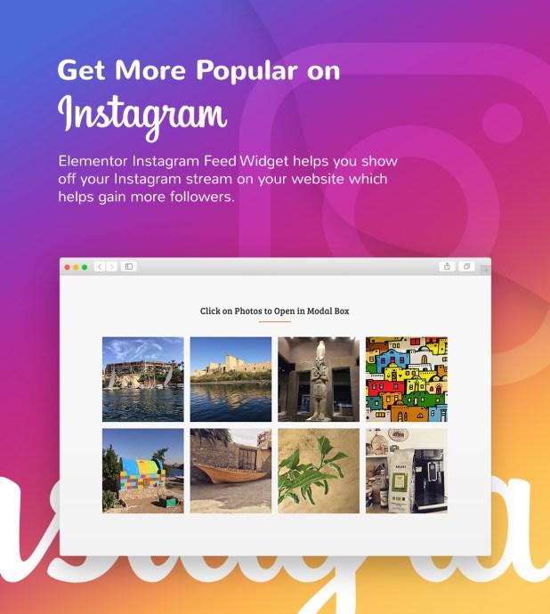 1 instagram feed