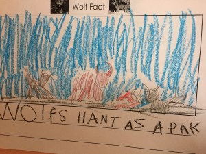 Wolves Hunt as a Pack. From Leap Little Frog Blog, Finding Focus from the Bottom Up