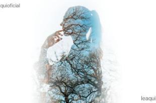 montagem fotográfica de uma mulher de perfil transparente exibindo galhos de uma árvore seres de diferentes mundos