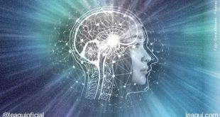O poder da oração não é ilusório, e a ciência reconhece sua eficácia