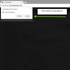 Disable Chrome notifications Selenium