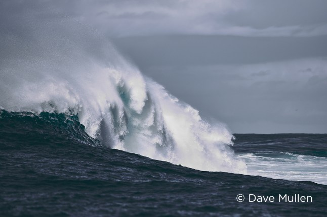 capture-one-raw-photo-editor-nature-photography-editing-blogpost-dave-mullen-big-wave