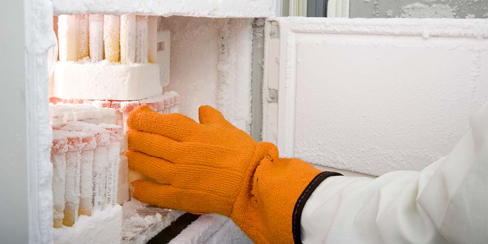 How To Buy The Best Medical Amp Lab Freezer